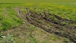 طبیعت گردی و آفرود در دالانپر و سولهدوکل مرگور در بخش سیلوانا