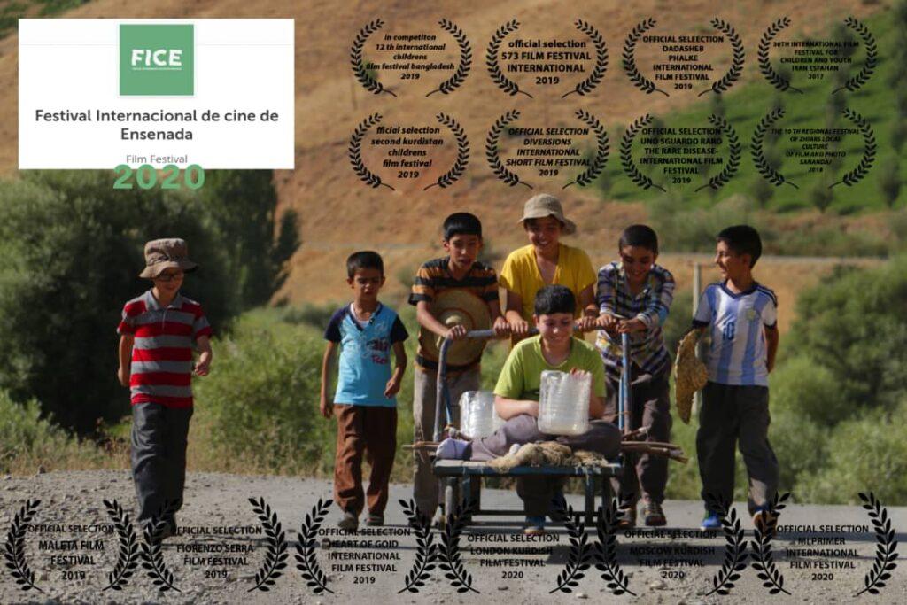 فیلم کوتاه «تابستان قوها» مقام دوم جشنواره بینالمللی آرژانتین را کسب کرد
