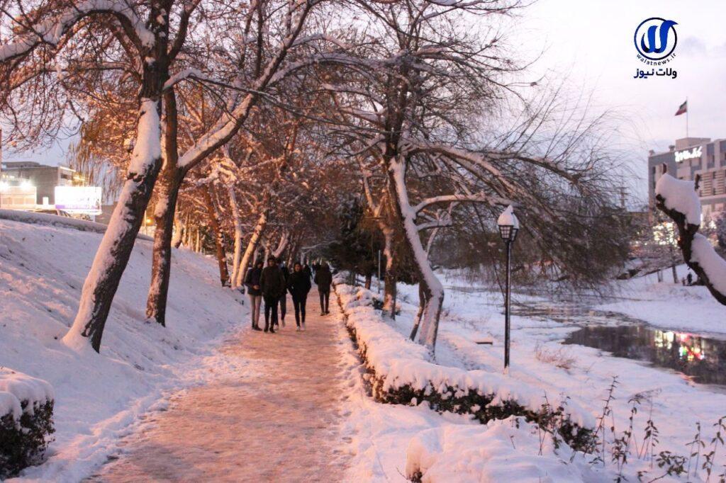 چرا وقت بارش برف دنیا آرامتر به نظر میرسد؟