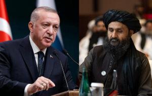 اردوغان و طالبانِ افغانستان